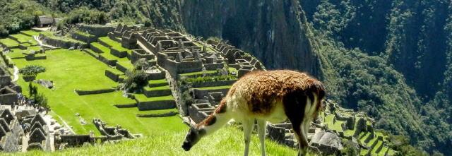 ペルー人のスペイン語「de repente」